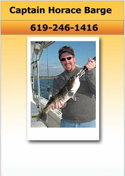 Tackleman Fishing Charters, Pictures of Fish
