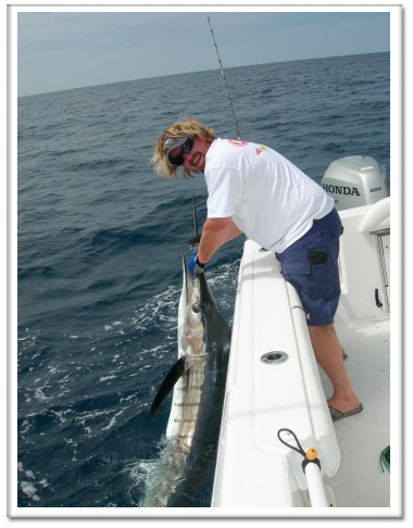 Tackleman Fishing Charters, Picture of a Striped Marlin